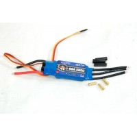 Variador Brushless 60A - ZTW